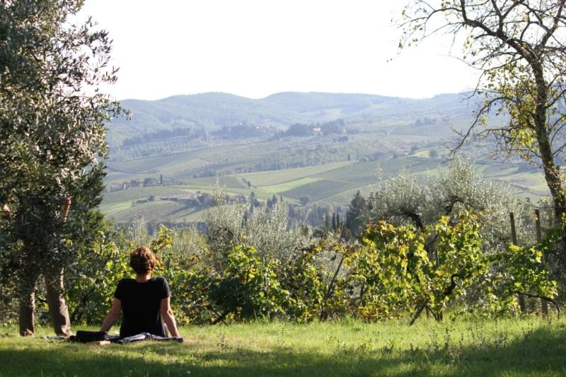 Spectacular view over Greve in Chianti Valley from Ancora del Chianti Eco - Friendly B&B in Tusc