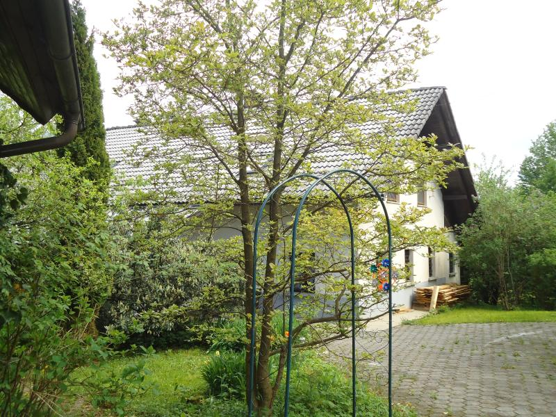 Holidays in the old farm house, vacation rental in Brezje