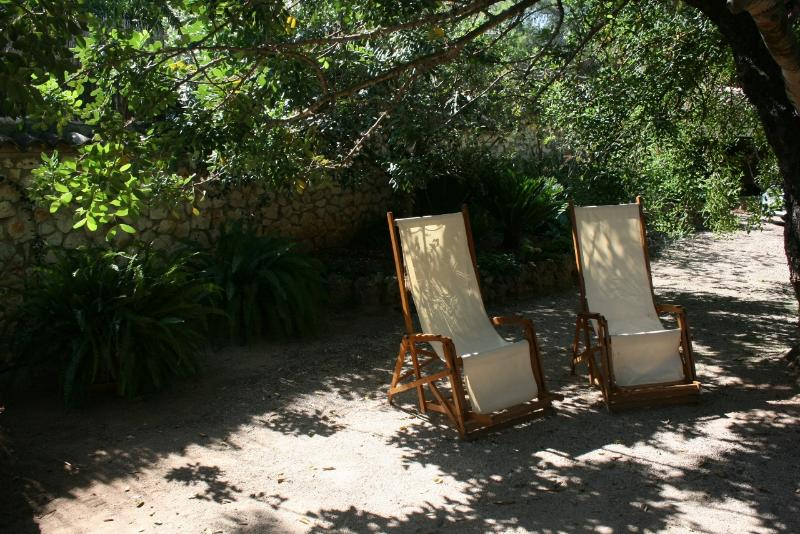 Garden: relaxing under the trees