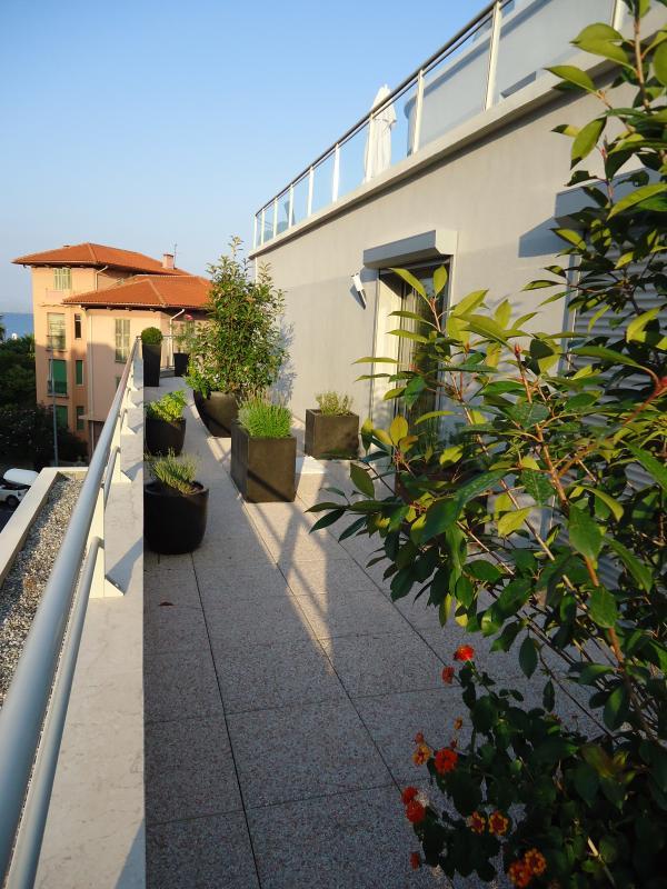 Terrace herb garden