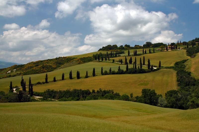 ....ecco un esempio dei nostri paesaggi...