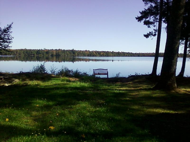 Your own, private oasis. The perfect place to read a good book or watch the loons swim by.