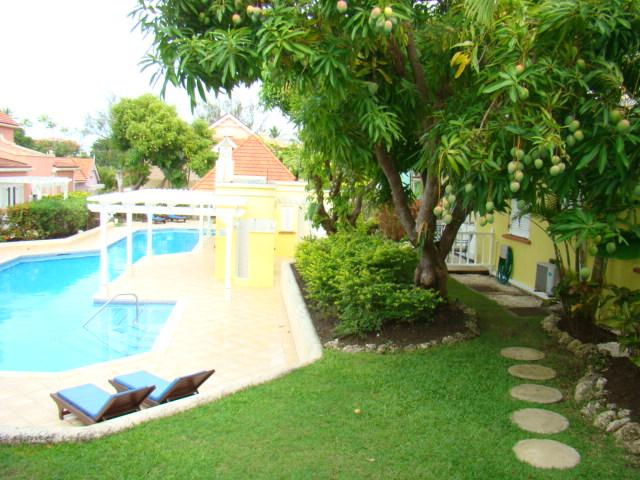 Tropical garden, complete with deck & mango trees