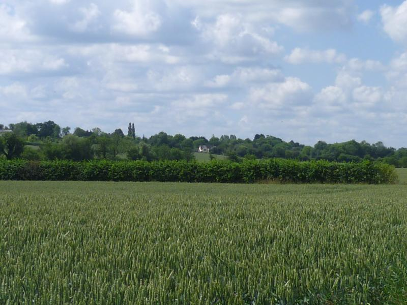 the house from the bridlepath looking across the fields