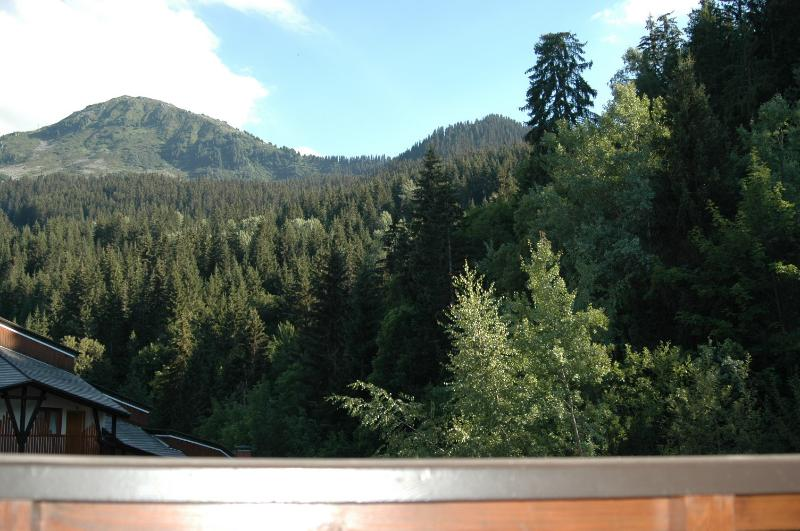 View from the balcony in summer