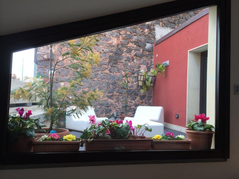 Flowered and shining windows