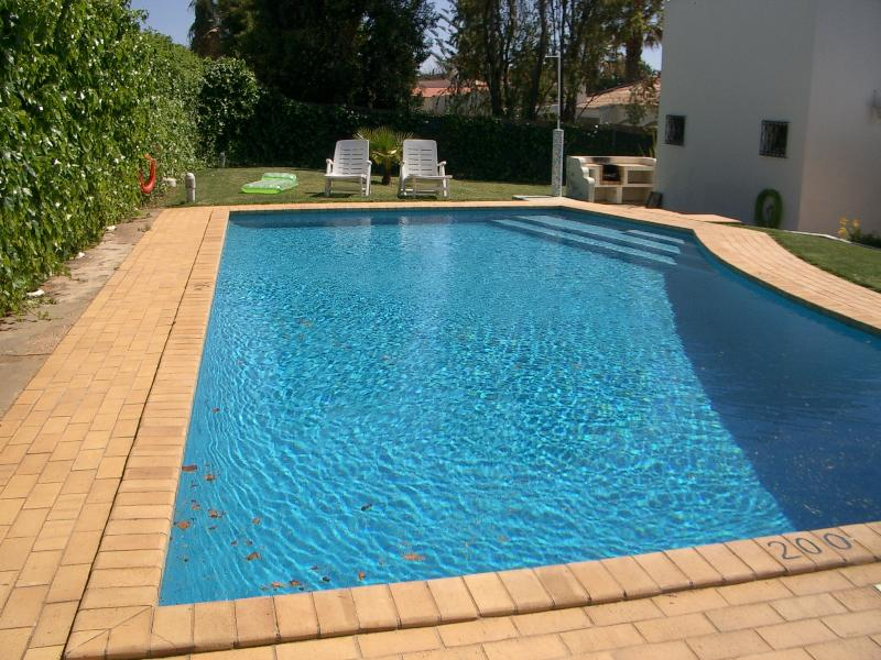 Large 9m by 5m pool