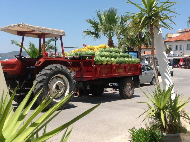 Fresca, productos de la tierra se puede encontrar todos los días en el pueblo de Gulluck, así como supermercados y tiendas