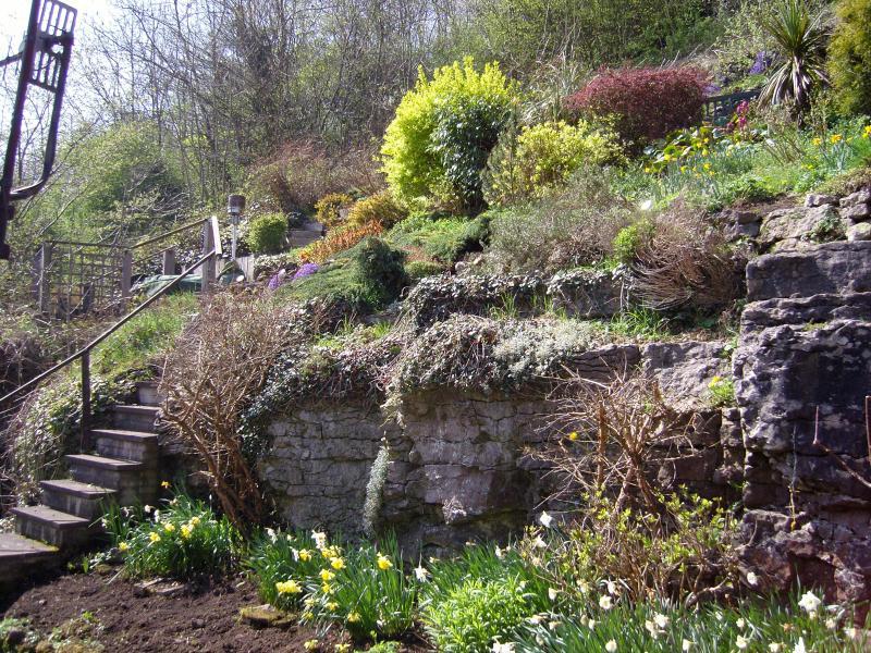 mid-level garden view