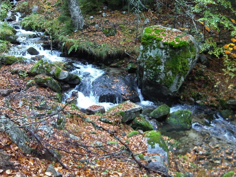 A nearby stream carries water from high in the mountains past The White House