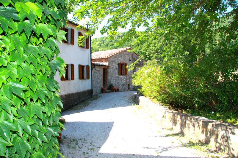 Borgo al Fango, holiday rental in Montieri