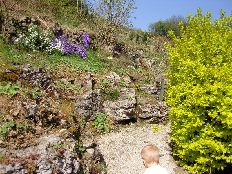 garden paths in summer