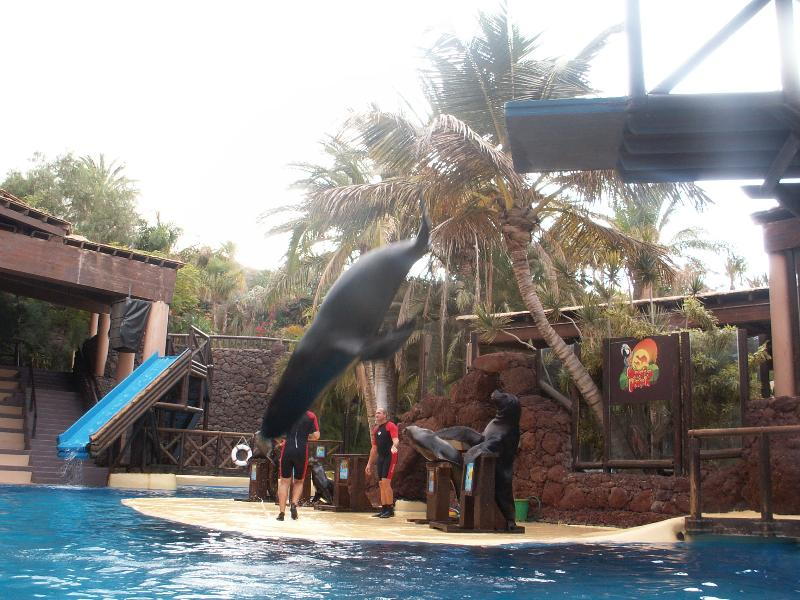 Sea-lion show at zoo and botanical gardens (45 mins drive - free bus service and excursions availabl