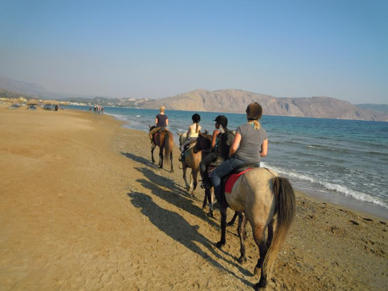 Horse Riding at Dawn on the Beach