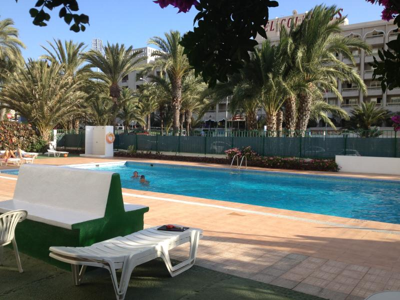 The outside swimming pool (20m long), great to relax in the sun or swim laps.