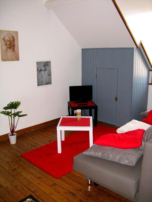 Le salon avec le canapé-lit