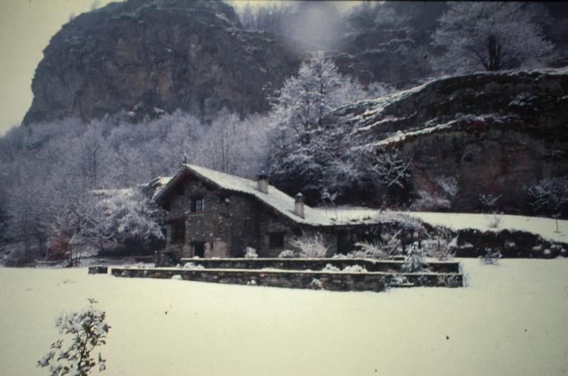 Nevicata improvvisa.....