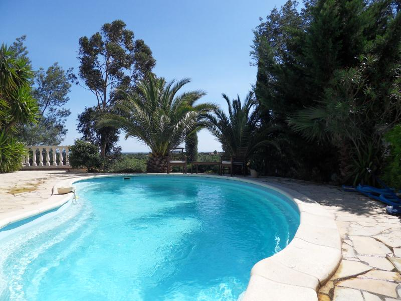 Fantastic villa with pool, holiday rental in Montesquieu des Alberes