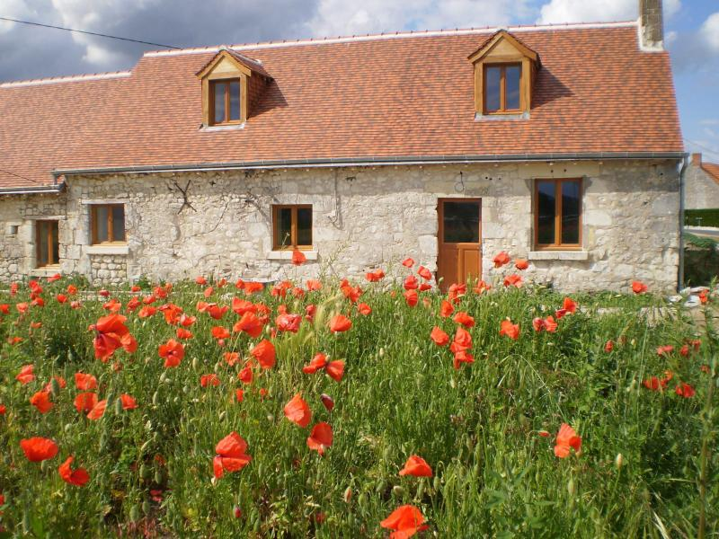 La Croix - 3 bed renovated gîte in the beautiful Loire, holiday rental in Continvoir