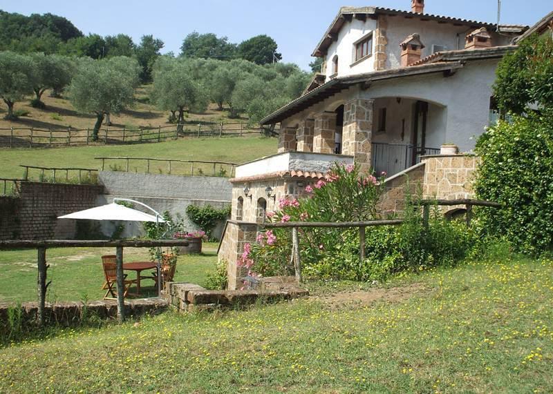 Farmhouse Bagnoregio area, Ferienwohnung in San Michele in Teverina