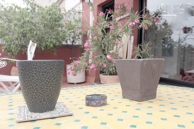 Grande terrasse avec plantes et arbres
