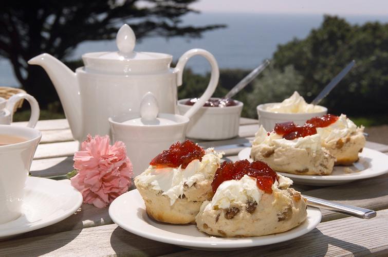 Delicious! A Devon Cream Tea