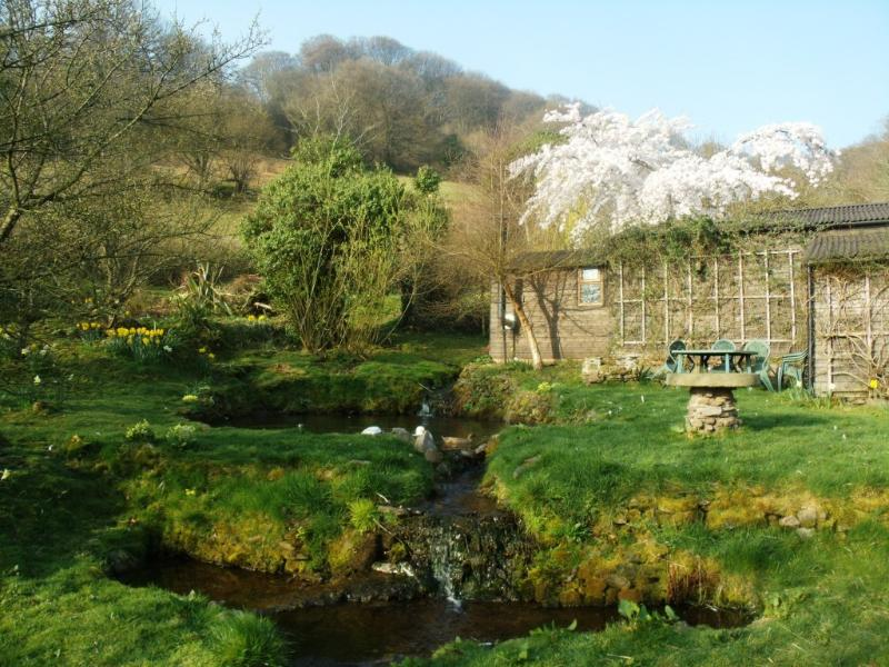 Pond and bunkhouse seating area in Spring.