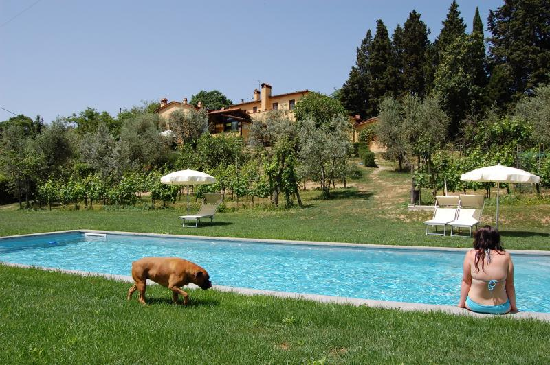 farmhouse' photos , SALVIA apt is on the right side just 20 metres from  the pool !!!!