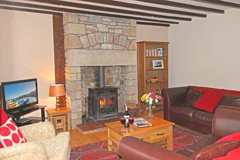 Relaxing and comfortable lounge with a cosy wood burning stove