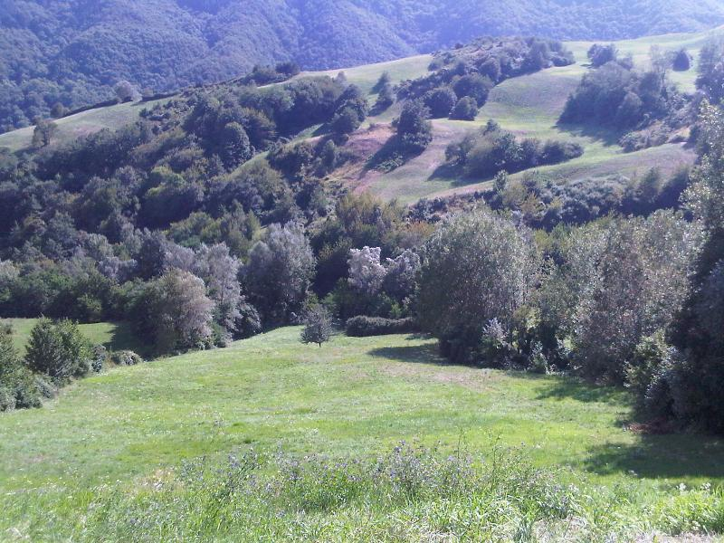 Tuscany Garden Apartment, holiday rental in Palazzuolo Sul Senio