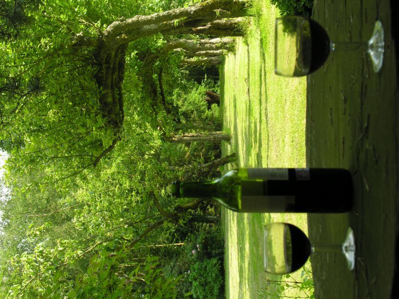 Jardín amurallado