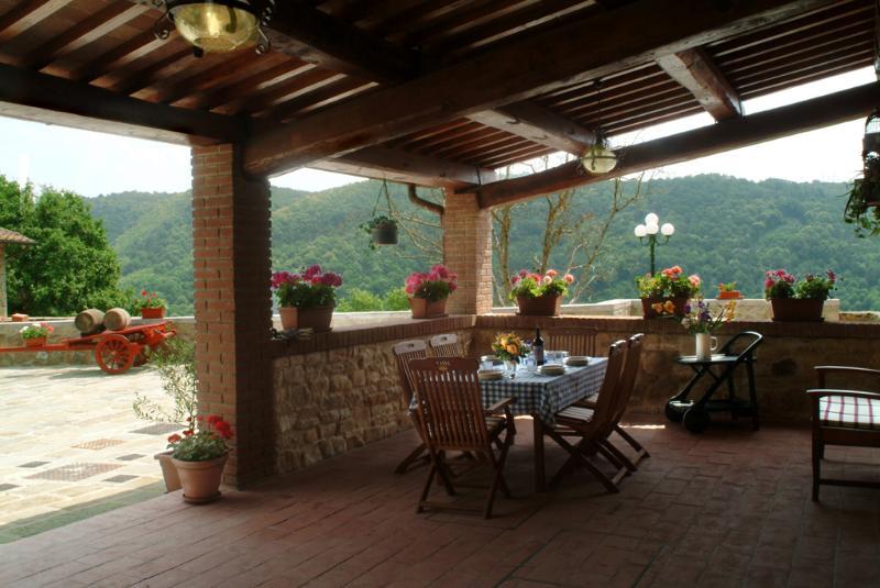 Villa il Castellaccio in Greve in Chianti - flat 3, holiday rental in Volpaia