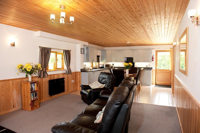 Luminoso y espacioso salón con cocina abierta, comedor