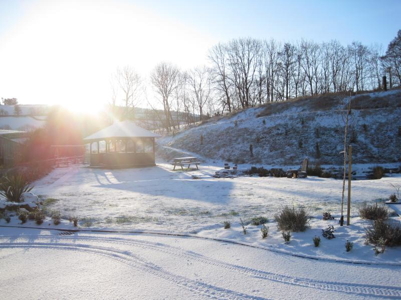 Winter sunshine!