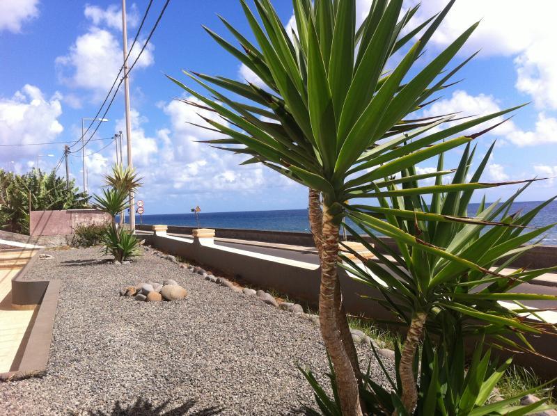 Sea Front  in Madalena do Mar, aluguéis de temporada em Ponta Do Sol