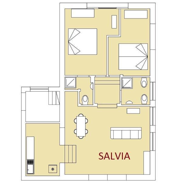 Drawing Salvia