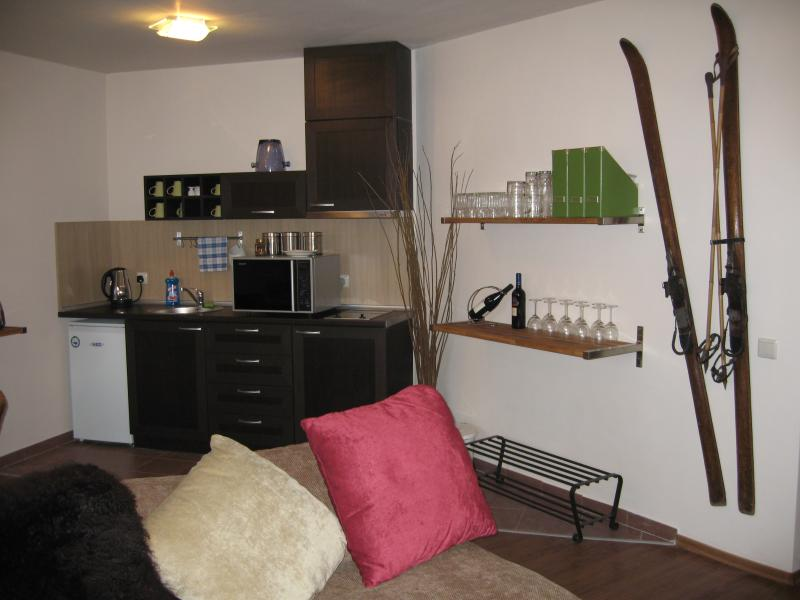 Lounge/Kitchen Area: Kitchen is fully equipped, with a large microwave/convection oven and grill.