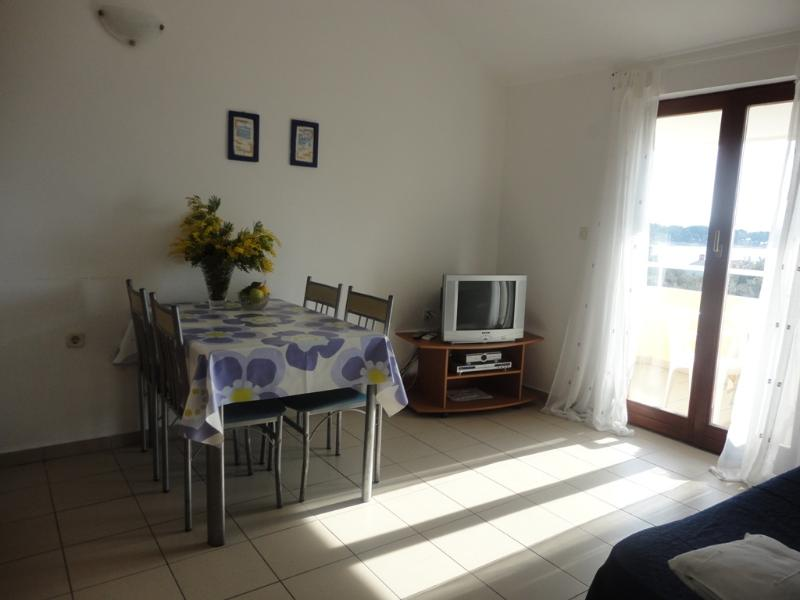 Ap Petrcane great sea view!, holiday rental in Petrcane
