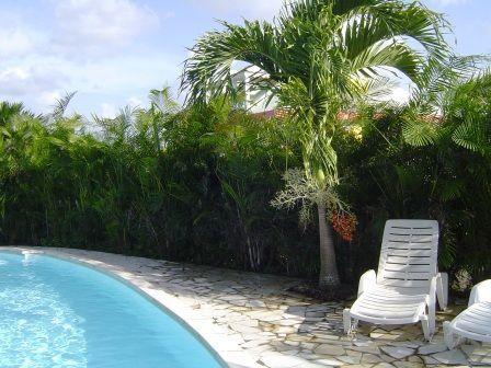gran piscina de 10 metros por 5 metros