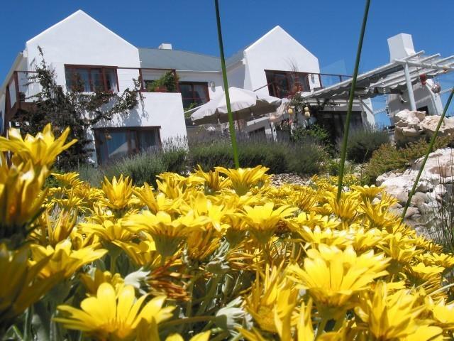 Farr Out Guesthouse****, location de vacances à Velddrif