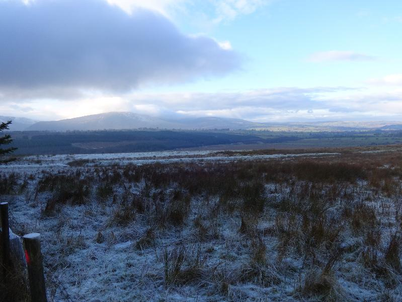 Winter view across fells from local forrest.