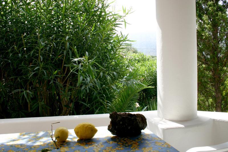La veranda (particolare)