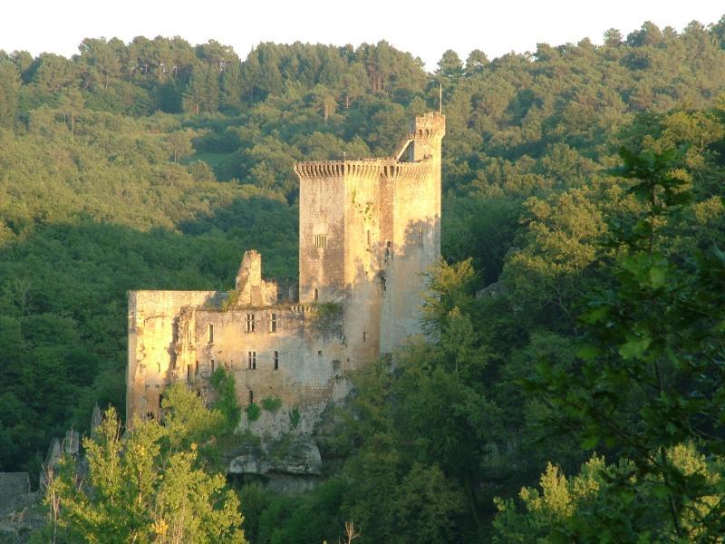 Château de Commarque que vous pourrez découvrir depuis votre chambre d'hôtes.