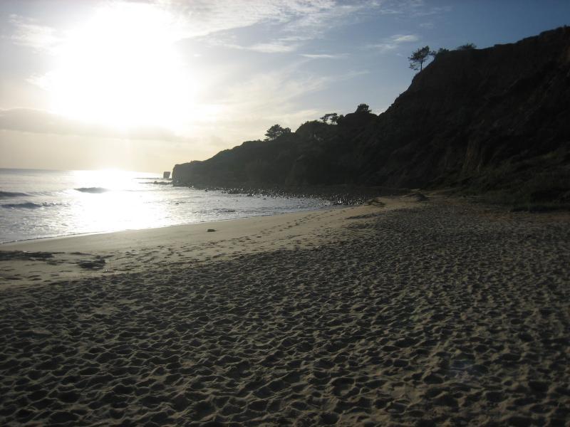 Nearest Beach(50m)