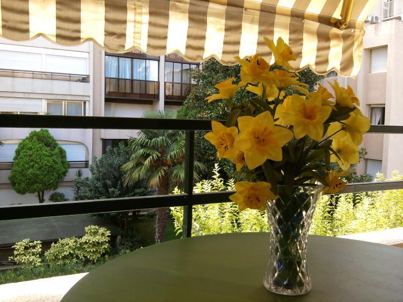Balcony/Terrasse