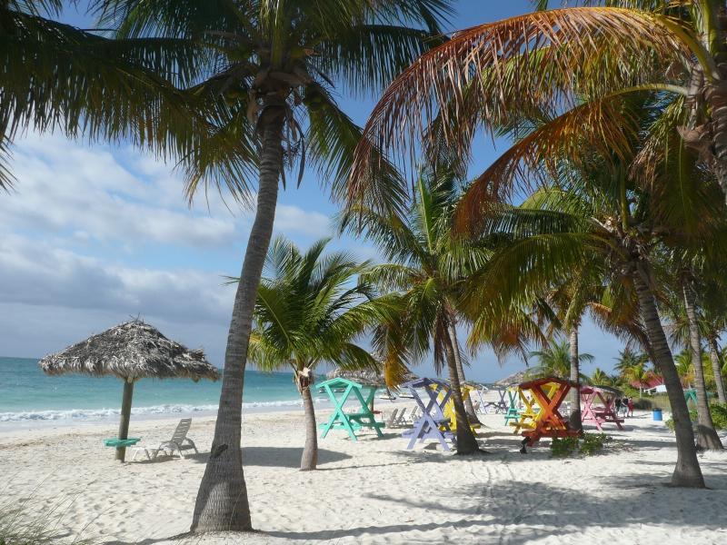 La plage, les palmiers...