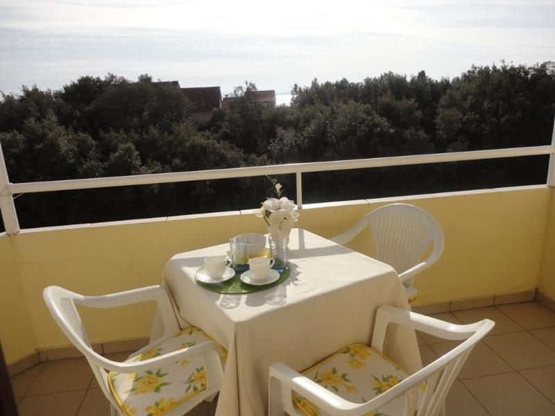 Ap Petrcane garden/sea view!!, holiday rental in Petrcane