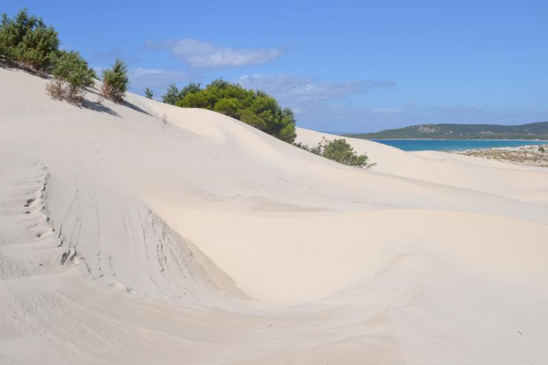 Le mitiche dune