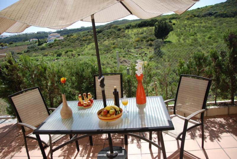 Rear Terrace overlooking countyside. Eat, BBQ, drink, relax, sunbathe. Stunning views.