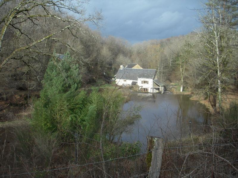 Le Moulin du Chassaing, holiday rental in Condat-sur-Ganaveix